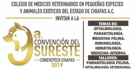 Captura de Pantalla 2019-10-02 a la(s) 14.13.30