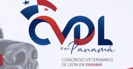 Captura de Pantalla 2019-12-30 a la(s) 0.08.08