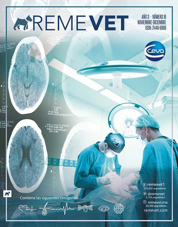 remevet-revista-016