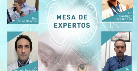 MESA DE EXPERTOS